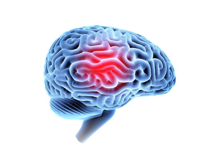 Episode 2 – Paediatric Concussion – Dr. Roger Zemek
