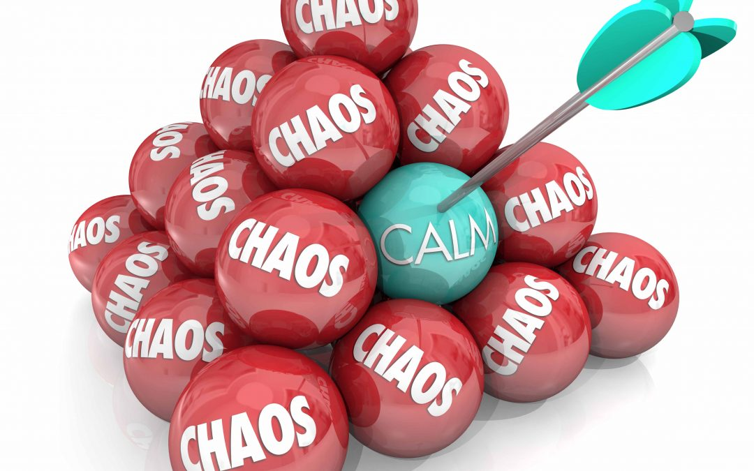 Episode 6 – Calming the Chaos – Will Johnston – Part 2